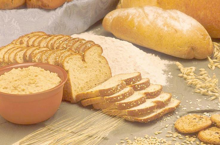 马哥孛罗面包